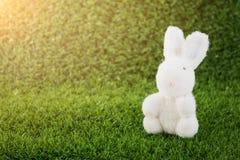 Игрушка зайчика на зеленой траве Стоковые Фото