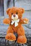 игрушка игрушечного плюша медведя Стоковое Фото