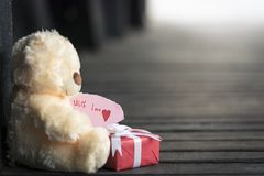 Игрушка и подарочная коробка плюшевого медвежонка Стоковая Фотография