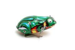 игрушка лягушки Стоковое Фото