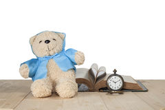 Игрушка медведя на поле Стоковое Изображение
