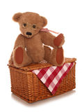 Игрушка пикника плюшевых медвежоат мягкая Стоковое Фото