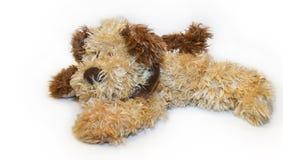 игрушка плюша собаки Стоковые Фотографии RF