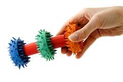 игрушка предложенная собакой Стоковое Фото
