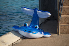 Игрушка пляжа ` s детей в форме дельфина на бассейне Стоковая Фотография
