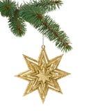 Игрушка рождества в форме звезды на ветви Стоковая Фотография