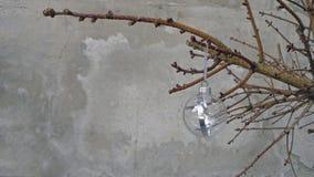 Игрушка рождества на сухой ветви ели Стоковые Изображения
