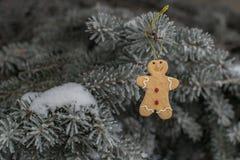 Игрушка рождественской елки Стоковые Фотографии RF