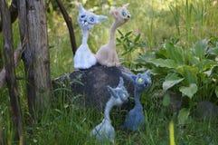 игрушка связанная котом Стоковые Изображения RF