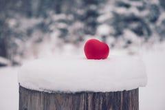 Игрушка сердца на снеге в концепции карточки дня валентинок леса Стоковое Изображение RF
