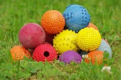 Игрушка шарика на собаки 4 стоковое изображение