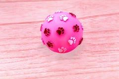Игрушка шарика для собаки на белом деревянном столе Стоковые Изображения RF