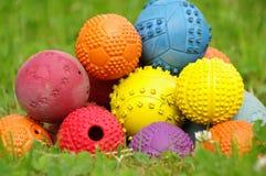 Игрушка шарика для собак Стоковое Фото