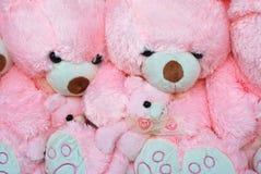 игрушки медведя розовые Стоковое Изображение RF