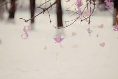 Игрушки на ветви дерева Стоковая Фотография