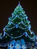 Игрушки на зеленом firtree рождества Стоковое Изображение
