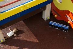 Игрушки на спортивной площадке Стоковое Фото