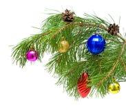 Игрушки Новый Год на ветви сосенки Стоковые Фото