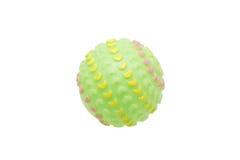 Игрушки для собак Шарик Стоковые Изображения RF