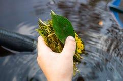 Игры мальчика с листьями стоковые изображения rf