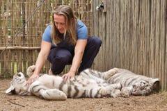 Игры молодого человека с новичком тигра стоковое фото