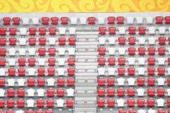 игры поля Пекин смололи paralympic след Стоковые Изображения