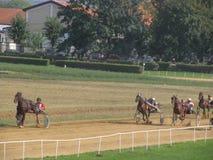 Игры Equestrian Ljubicevo Стоковое Фото