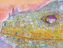 Игуана и рыболов отразили в своем глазе Стоковое Фото