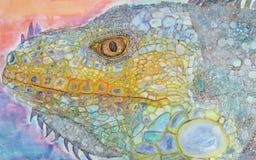 Игуана, нарисованная рука Стоковое Изображение
