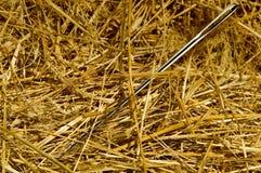 Игла в стоге сена Стоковые Фото