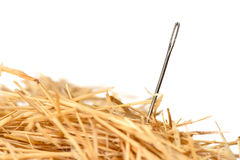 Игла в стоге сена Стоковое фото RF