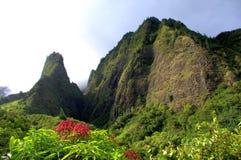 Игла Iao, Мауи, Гаваи стоковое изображение rf