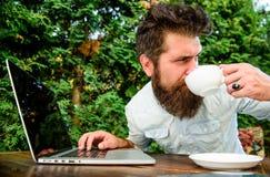 Идеальное дело работник офиса E зверский бородатый хипстер на перерыве на чашку кофе счастливый человек работая на ноутбуке стоковая фотография