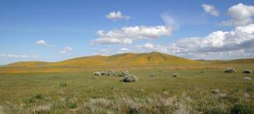 идеально весна ландшафта Стоковые Фотографии RF