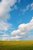 идеально лужайка Стоковая Фотография RF