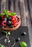 Идеи для здорового питания Диетический мусс шоколада, parfait с свежими ягодами поленик, голубики и красные смородины в g стоковое изображение