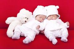 идентичный близнец сестер Стоковые Изображения RF