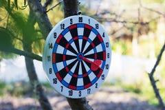 Идея достижения Dartboard с дротиком в яблочке стоковое изображение