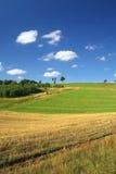 идилличное лето пейзажа Стоковое фото RF