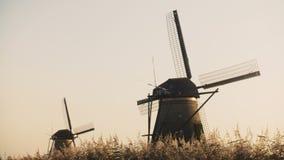 идилличные голландские деревенские ветрянки 4K 2 в поле Нидерланды Изумительные мир и тишь с легким бризом и ясным небом сток-видео