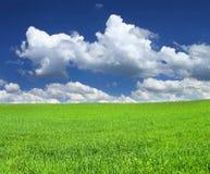 идилличный пейзаж Стоковая Фотография RF