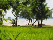 Идилличный пляж около Пхукета Таиланда стоковые фотографии rf