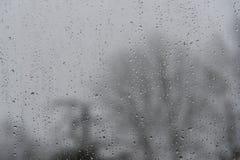 Идите дождь падения на окне, расплывчатые чуть-чуть деревья на заднем плане, ба Стоковая Фотография RF
