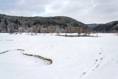 Идите снег на поле для гольфа в зиме, предпосылке леса, космосе экземпляра стоковое фото
