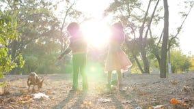 Идите с любимчиком в теплом дне осени, детьми имейте полезного время работы совместно на парке в backlight акции видеоматериалы