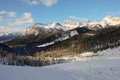 Идти в горы в середине гор между соснами и елями Стоковые Фотографии RF