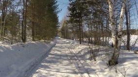 Идти в лес зимы акции видеоматериалы
