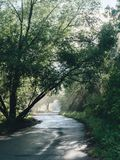 Идти в парк города на утреннем времени Стоковая Фотография RF