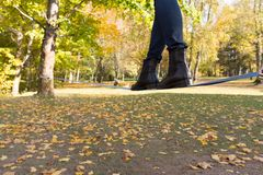 Идти над землей на талрепе связанном вверх между 2 деревьями цветасто стоковые изображения rf