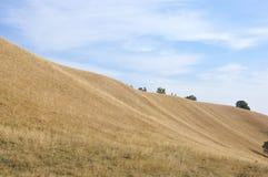 Идти на верхнюю часть Пески Deliblato стоковая фотография
